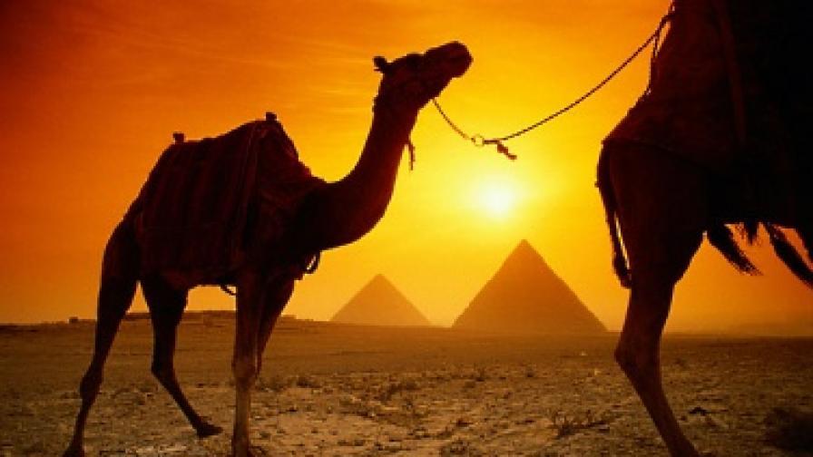 Нова година в Египет