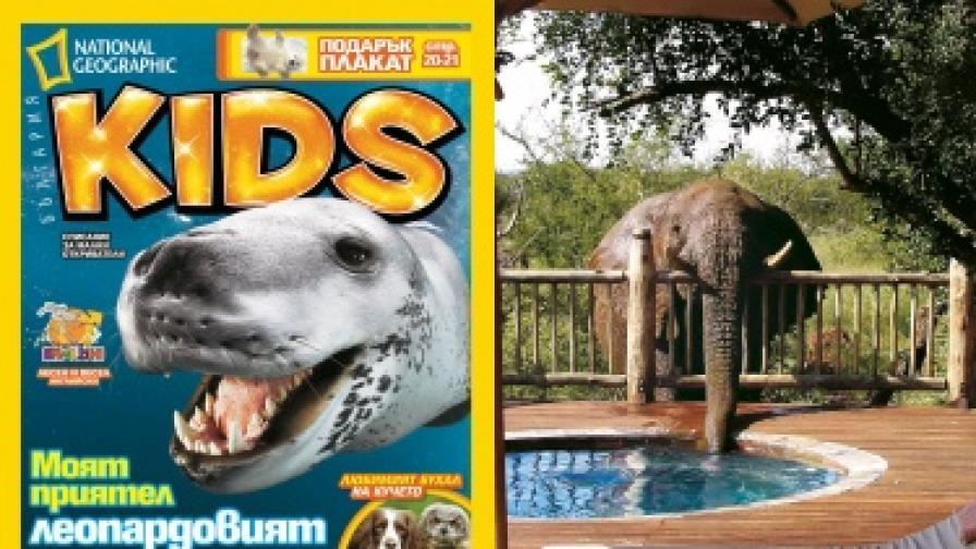 Разказ за леопардовия тюлен в NG Kids