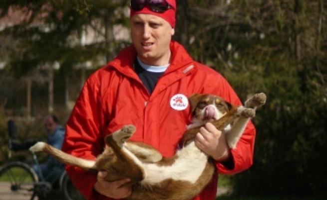 Ще кастрират софийските кучета в швейцарска амбулатория