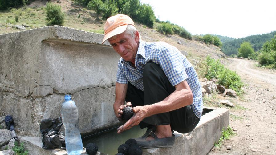 Цветанов взел мумио от Кушла за Борисов