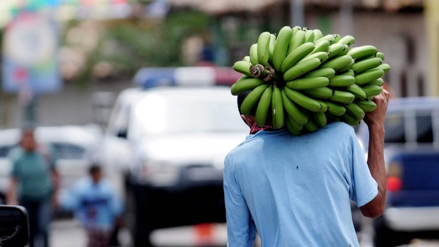Паника и спад на продажбите след слух за разяждащи плътта банани в Мозамбик