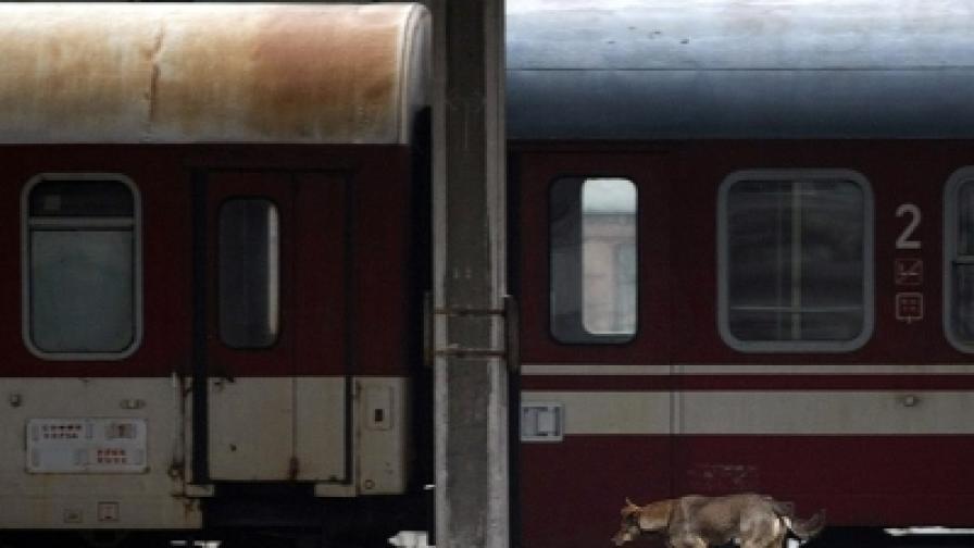 БДЖ спря всички влакове в страната до 16 ч.
