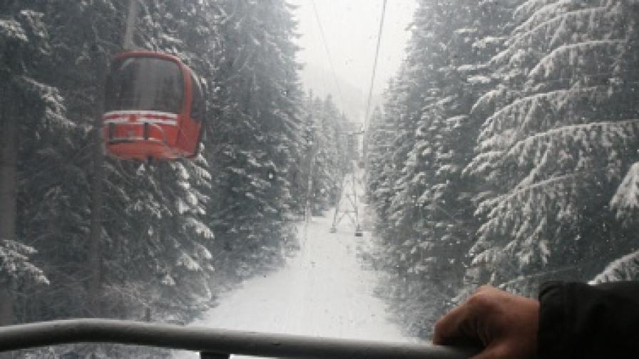 "Промени в закона за горите заради ""Витоша ски"""