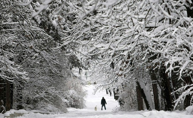 Месечна прогноза: Много студено в началото на февруари
