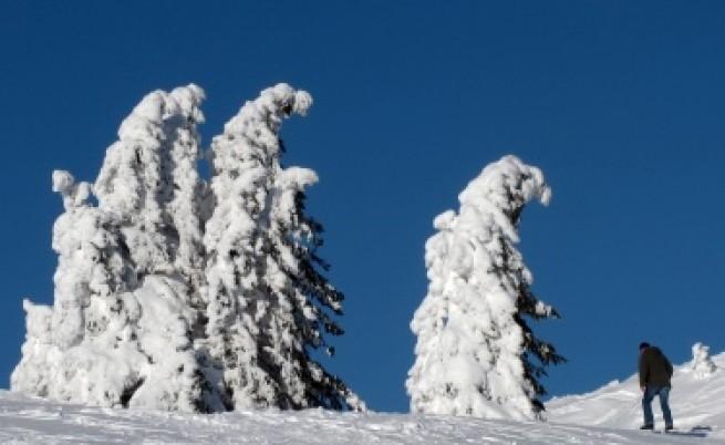 Опасни студове в 12 области