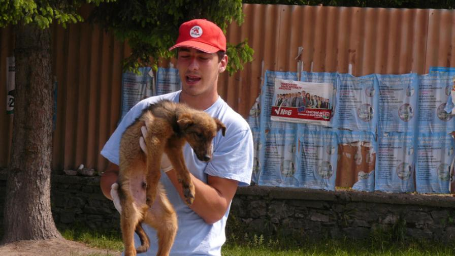 Борисов: Всяко агресивно куче да се евтаназира
