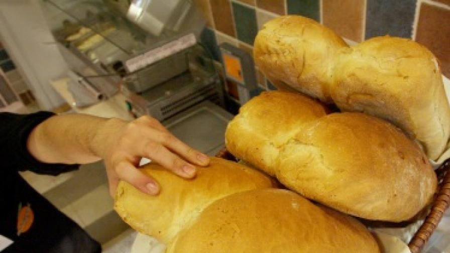 БСП: Не трябват песнички за хляба, а действия