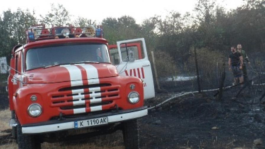 Близо 300 пожара из страната
