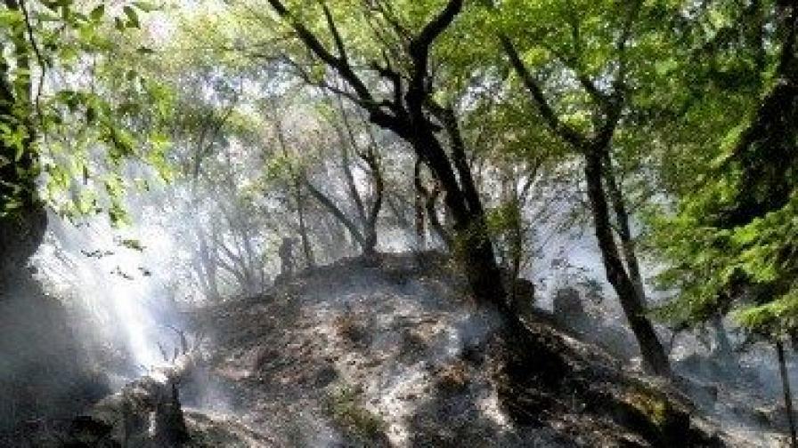 Пожар над Рилския манастир