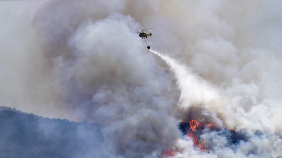 Пожарите в Португалия взеха жертва