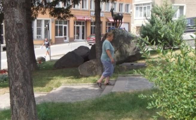 Дянков предложи вариант за възстановяване на болницата в Девин