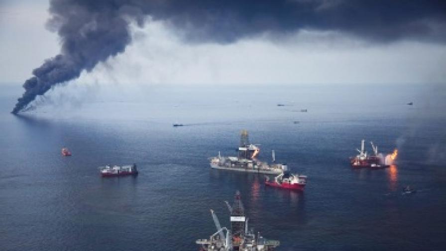 Разливът, предизвикан от взрив на петролна платформа в Мексиканския залив, предизвика екологична катастрофа