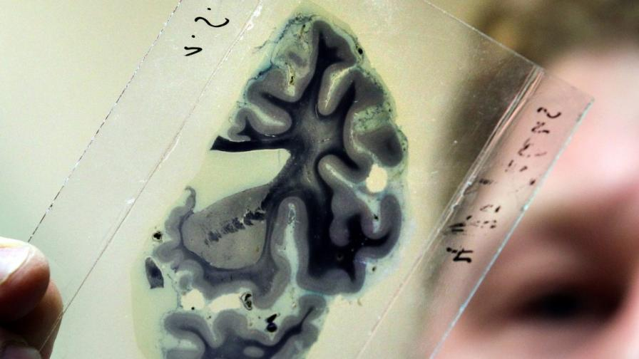 Учени разшифроваха вътрешния глас на човека