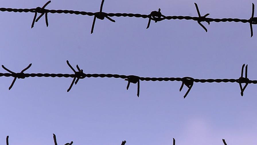 Срамни факти за оградата