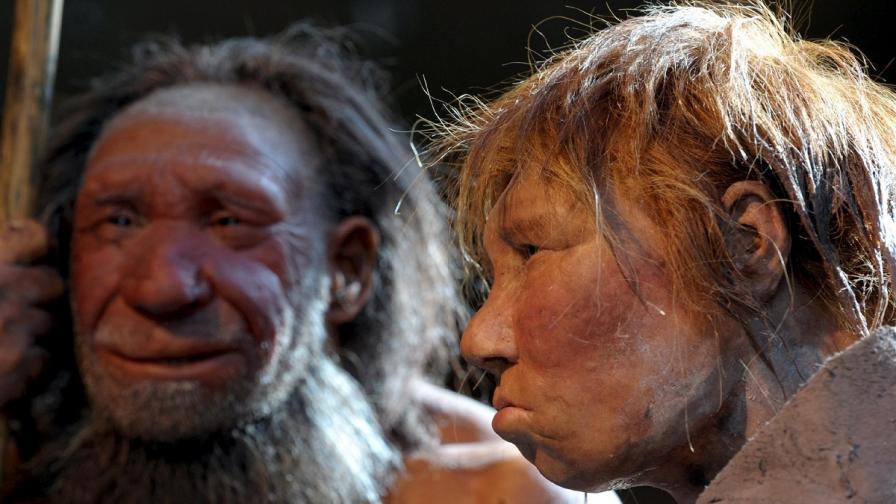 Драматична нова хипотеза: Хомо сапиенс е изял неандерталеца