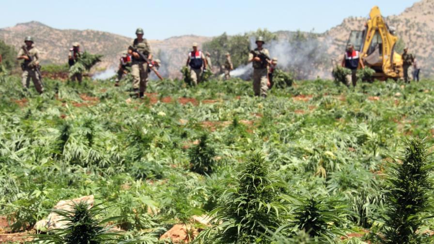 """""""Евростат"""": Увеличение на престъпленията с дрога в България"""