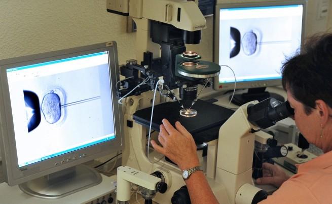 Учени: Жените ще произвеждат сперматозоиди, а мъжете - яйцеклетки