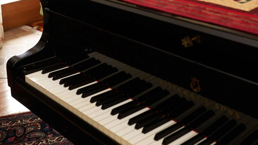 """Пианист на 13 от Русе стигна до """"Роял Албърт хол"""""""