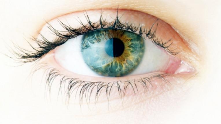 зрение напрежение офталмолог превенция слепота компютър ретина