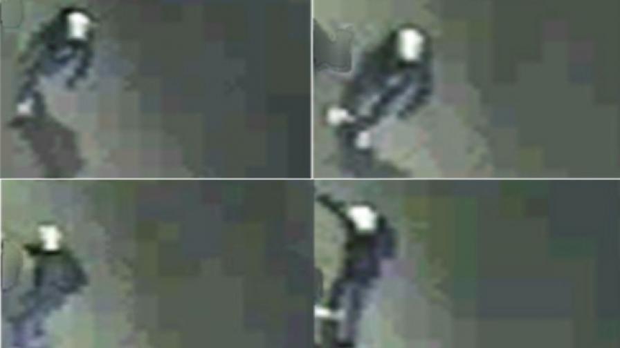 """Гръцката полиция разпространи снимки от разстрела на членове на """"Златна зора"""""""