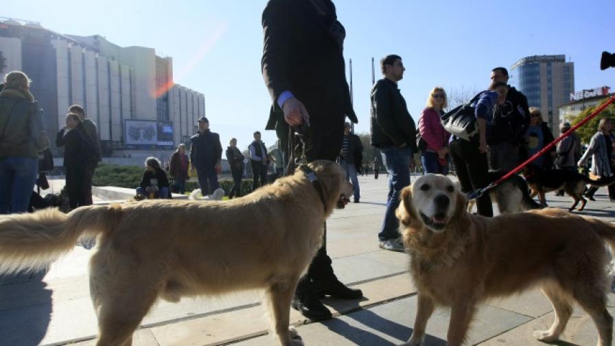 Протест заради закриването на кучешкия приют в Богров