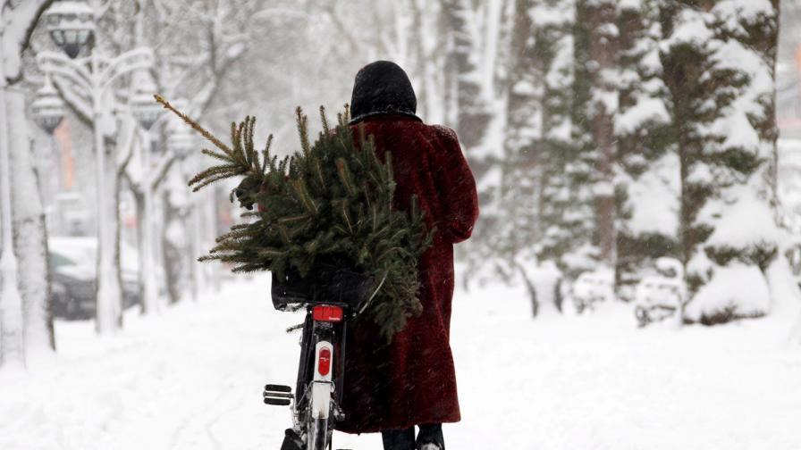 Времето през декември - между минус 15 и 13 градуса